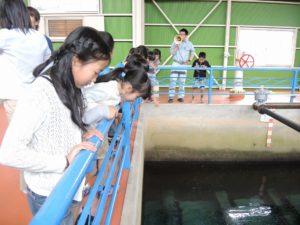 上野浄水場 1